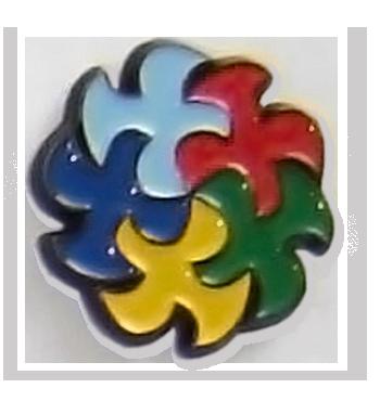 Insigna 5 culori