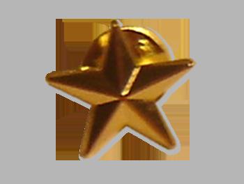Insigna-3D