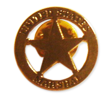 Insigna stea