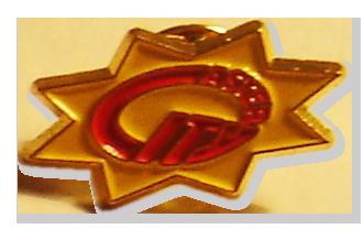 Insigna placare auriu